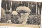 77 - cpa - Forêt de FONTAINEBLEAU - Apremont - Le champignon ( i 3627)