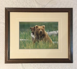 Thomas D. Mangelsen Framed Limited Edition bear Photograph numbered hand signed