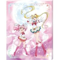 Sailor Moon Jigsaw Puzzle Canvas Wall Art Panel Sailor Moon Eternal 366pcs Ensky