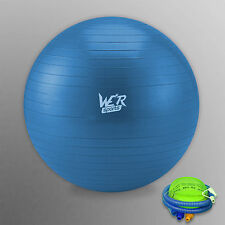 Fitness Exercise Swiss Gym Fit Yoga Core Ball 65CM Abdominal Back Workout Blue