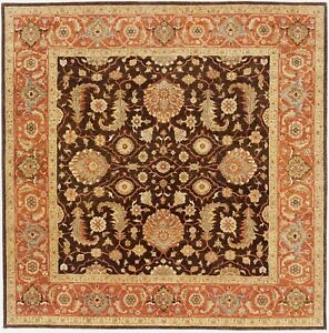 Hand-knotted  indian rug. 8'x 8'