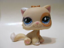 Littlest Pet Shop Yellow Cat Persian 521 Authentic Blemished As Shown