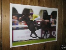 Sea the Stars Horse Racing Legend POSTER 18