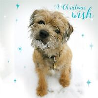 Charity Christmas Card Pack - A Christmas Wish (10 Cards of 1 Design)