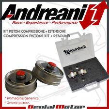 Andreani Kit Pistone Forcella Big Piston per Honda MOTO 3 2012 > 2015