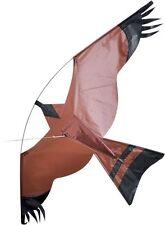 HAWK BIRD OF PREY KITE- 102CM WINGSPAN - EASY TO FLY SINGLE LINE KIDS KITE
