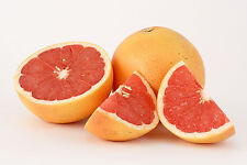 Essential Oil Grapefruit Pure and Natural 0.3oz