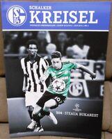 FC Schalke 04 Schalker Kreisel Magazin 18.09.13 Champions League S. Bukarest /33