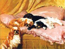 Cavalier King Charles Spaniel Dog Arthur Wardle 1904 Large New Blank Note Cards