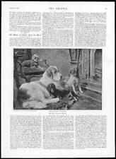 1894 ANTIQUE PRINT-FINE ART Fireside Fancies Sperling chiens Tapis Carlin Chaise (119)