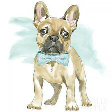 FRENCH BULLDOG DOG POSTER STYLE FINE ART PRINT FRENCHI BOULEDOGUE FRANCAIS