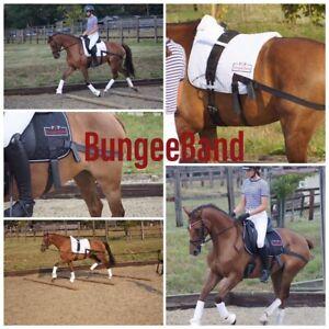 BungeeBand Jumping Pad, Equine Band, Core Trainer, Equi Training
