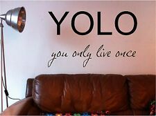 YOLO you only live once wall art sticker decal