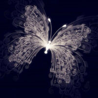 Butterfly Diamond Painting Poster Modern Wall Decoration Panel Painting Pictures