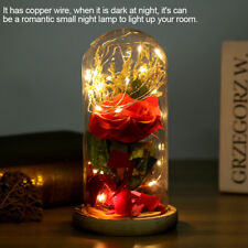 Enchanted Forever Rose Flower In Glass LED Light Wedding Festival Home Decor