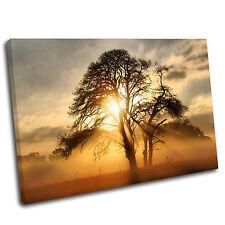 Paisaje De Lona Pared Arte Puesta de sol árbol impresión enmarcado cuadro 18 Premium Calidad