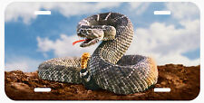 Rattlesnake Auto License Plate Tags Snake Sky Background Reptile Fangs Rattler