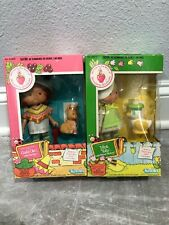 Strawberry Shortcake Mint Tulip and Cafe Ole Dolls 1982
