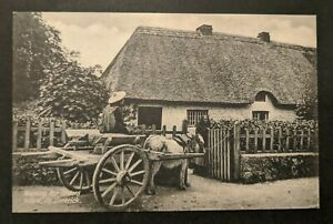 Mint Vintage Waiting Orders Adare Co Limerick Ireland Real Picture Postcard RPPC