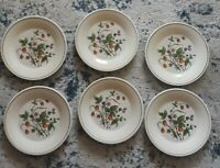 "Set of 6 Vintage Ceramica  San Marciano  Hand Painted Dinner Plates 10""  Italy"
