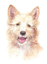 Paintings/Posters/Prints Unknown Breed Dog Collectables