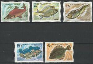 USSR 1983 Fauna Fish 5 MNH stamps