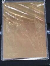 Shaquille O'neal 23 karret gold rookie 1992/93 fleer replica in CD case