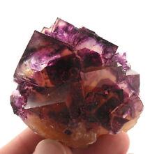 5527 FLUORITE linea articoli fantasma okorusu Namibia specimen stadio minerale