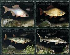 Protection de poisson Threatened avec EXTINCTION jeu 4 MNH timbres 2016 pologne
