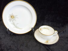 Arzberg Mokkagedeck um 1930 3 teilig Selten Handgemalt Porzellan Porcelain Top