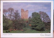 Irish Postcard Audley Castle Strangford County Down Northern Ireland Insight 528