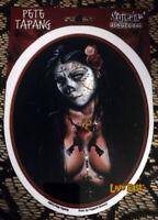 SUGAR SKULL PIN UP GIRL LOWRIDER DECAL STICKER WINDOW BUMPER HOT ROD CUSTOM ART