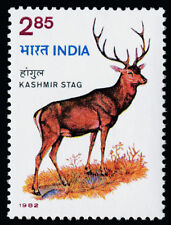 India 988 MNH Kashmir Stag, Deer