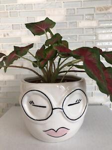 "NEW Face Planter Pot - Fits 4"" Nursery Planter- Succulents Indoor Plants"