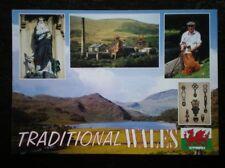 POSTCARD B45-17 CAERNARVONSHIRE MULTI VIEW OF TRADITIONAL WALES