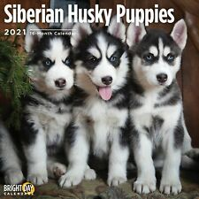 2021 Siberian Husky Puppies 12 x 12 Wall Calendar Cute Dog