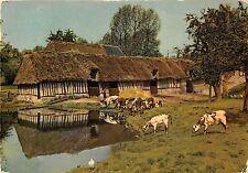 BR31201 La Normandie cour de ferme cow vaches france