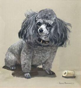 Original Helen Buckland Pastel Art Gray TOY POODLE Vintage 1970s Signed Framed