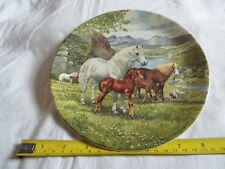 BRADEX WELSH POUNTAIN PONIES PLATE (1040)
