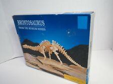Brontosaurus Dinosaur Laminated Wood Model Diy Project Kit Jurassic Period