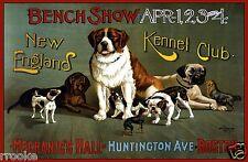 Set of 2 Vintage DOG SHOW Fine Art Prints / Posters St Bernard Collie Boxer Bull