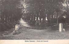 5627) ORIOLO ROMANO (VITERBO) OLMATA DEL CONVENTO.