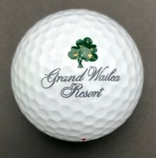 Grand Wailea Resort Logo Golf Ball (1) Spalding PreOwned