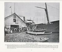 1897 VICTORIAN PRINT ~ LOADING SHIPMENTS OF BANANAS IN JAMAICA ~ PLUS TEXT