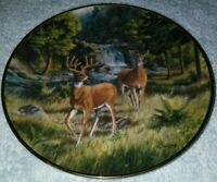 SUMMER SOJOURN BY JJWHITING INTERNATIONAL WILDLIFE COALITION FRANKLIN MINT PLATE
