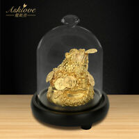 Money Toad Feng Shui Frog 24k Gold Foil Crafts Lucky Fortune Ornament Home Decor
