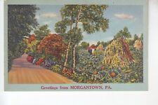 Greetings from Morgantown  PA  64571