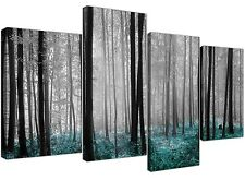 Canvas Prints of Teal Forest Woodland Trees in Black and White