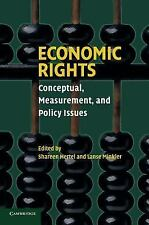 Economic Rights: Conceptual, Measurement, And Policy Issues: By Shareen Herte...