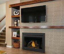 """Napoleon B46NTR - Ascent 46"""" Direct Vent Gas Fireplace - Top or Rear Vent"""
